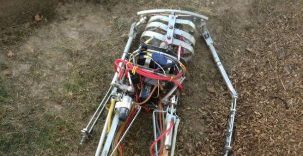 deadrobot